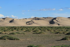 Sanddunes in the Desert Gobi Royalty Free Stock Images