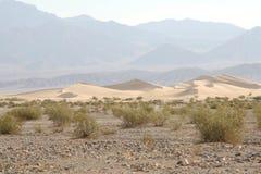 Sanddunes en Death Valley Foto de archivo