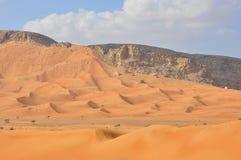 Sanddunes i öken royaltyfria foton