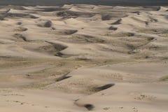 Sanddunes i öknen Gobi arkivbilder