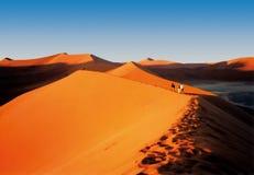 Sanddunes namibiani Fotografia Stock
