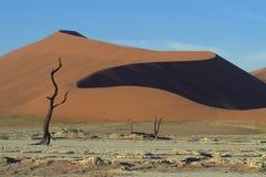 Sanddunes namibiano 1 Imagens de Stock Royalty Free