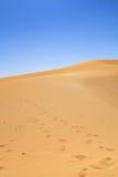 Sanddyn Arkivfoton