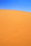 Sanddyn Royaltyfria Bilder