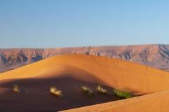 Sanddyn i öknen av Marocko royaltyfri fotografi