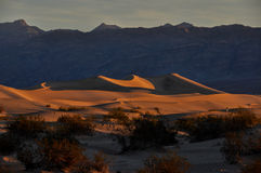 Sanddyn i den Death Valley nationalparken, Kalifornien, USA Royaltyfria Foton