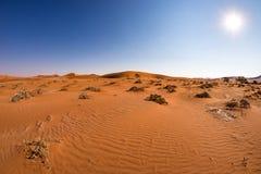 Sanddyn i den Namib öknen på gryning, roadtrip i den underbara Namib Naukluft nationalparken, loppdestination i Namibia, Afr Royaltyfria Foton