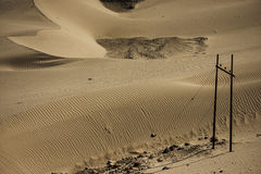 Sanddyn i den Nubra dalen Royaltyfria Foton