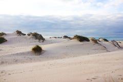 Sanddyn i portugisisk atlantisk kust Arkivfoto
