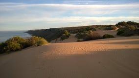 Sanddyn i västra Australien Fotografering för Bildbyråer
