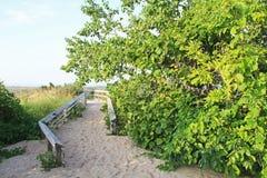 Sanddyn längs Lake Michigan, USA Arkivbild
