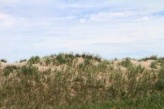 Sanddyn med gräs Arkivbilder