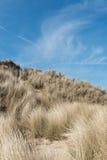 Sanddyn med sandrör på solig sommardag Arkivfoto