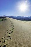Sanddyn med Sangre de Cristo berg Royaltyfria Bilder
