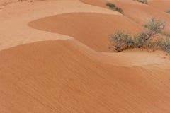 Sanddyn: Modeller och vågor som de regniga mistnedgångarna royaltyfri bild