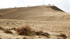 Sanddyn och folk i Tottori royaltyfri foto