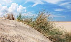 Sanddyn och himmel arkivbilder