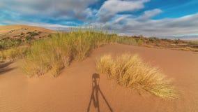 Sanddyn och saxaul i nationalparken Altyn Emel 4K TimeLapse - September 2016, Almaty och Astana, Kasakhstan arkivfilmer