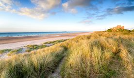 Sanddyn på Bamburgh royaltyfri fotografi