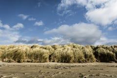 Sanddyn på den Beadnell fjärden Northumberland royaltyfri foto