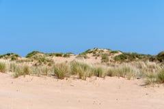 Sanddyn på en ljus solig dag Arkivbilder