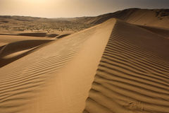 Sanddyn på Liwa Royaltyfri Bild