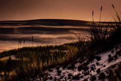 Sanddyn på Nordsjön royaltyfri bild