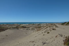 Sanddyn på Stillahavskusten nära Arcata skäller Royaltyfri Foto