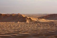 Sanddyn på Sunset#5: Hav av guld- sand Arkivfoto