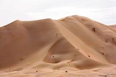 Sanddyn på Sunset#6: Rub Al Khali - bruten näsa Arkivbilder