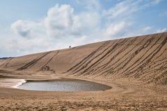 Sanddyn på Tottori, Japan arkivfoto
