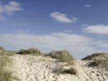 Sanddyn på Walberswick - Suffolk Arkivbilder