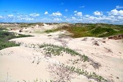 Sanddyn vid Zandvoort aan Zee Arkivbilder