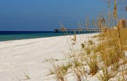 Sanddyner Royaltyfri Bild