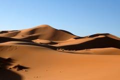 Sanddyner i den Sahara öknen Arkivfoto