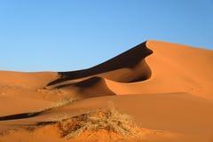 Sanddyner i den Sahara öknen Royaltyfria Foton