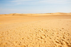 Sanddyner i Sahara Royaltyfri Bild