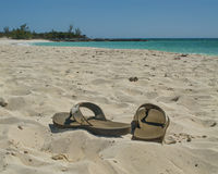Sandelholze auf dem Strand Stockbild