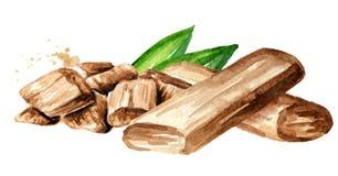 Sandelhout of Chandan Sticks en poeder met groene bladeren Waterverfhand getrokken die illustratie, op witte achtergrond wordt ge stock illustratie