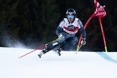 SANDELL Marcus in Audi Fis Alpine Skiing World-de Reus van Kopmen's royalty-vrije stock afbeelding