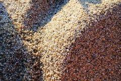 sanden av underbara calabria Royaltyfri Foto