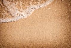 Sanden med vinkar arkivbild