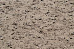 Sanden på stranden på dammet textur Arkivfoton