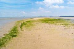 Sandflatlandschap van natuurreservaat dichtbij Haringvlietdam en Verrotting royalty-vrije stock foto