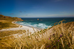 Sandfly beach Stock Image