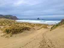 Sandfly-Bucht bei bewölktem Winterwetter, nahe Dunedin, Otago-Halbinsel, Südinsel, Neuseeland lizenzfreies stockbild