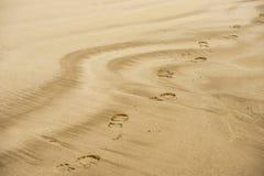 Sandfotspår Royaltyfri Bild