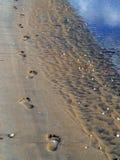 Sandfotspår Fotografering för Bildbyråer