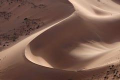 Sandhügel in der Wüste lizenzfreies stockbild