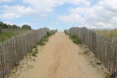 sandhill Zdjęcie Royalty Free